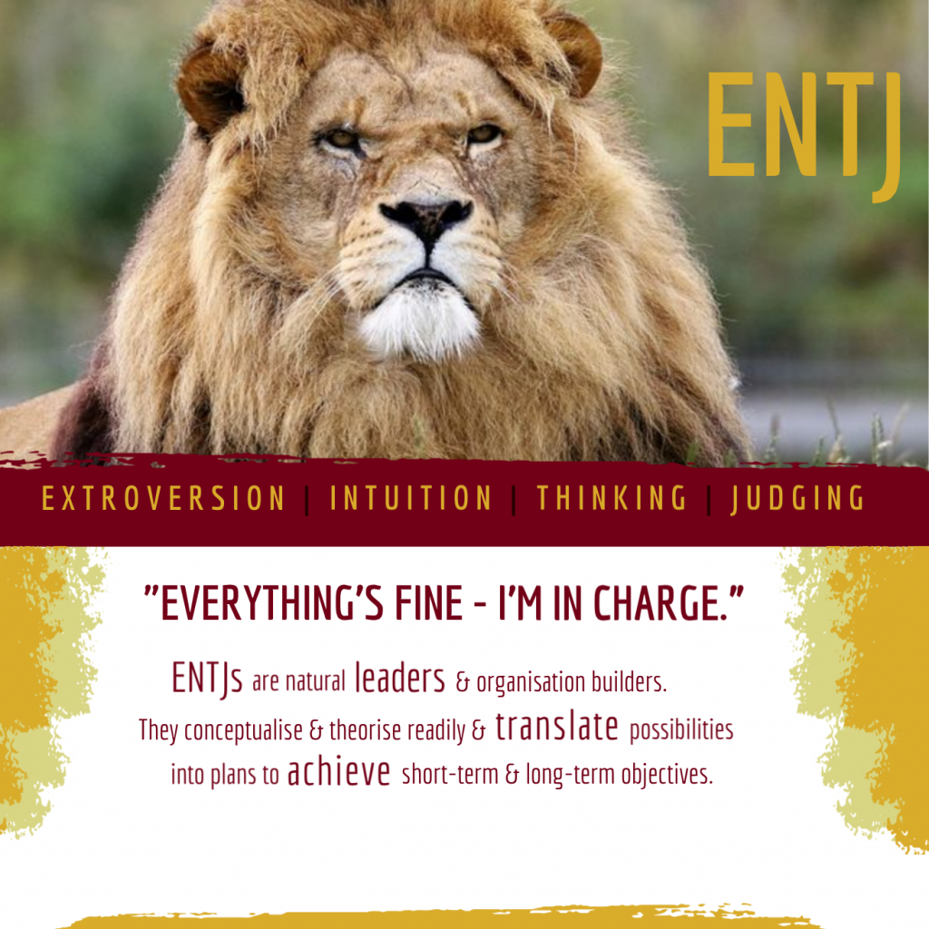 ENTJ: Everything's fine - I'm in charge