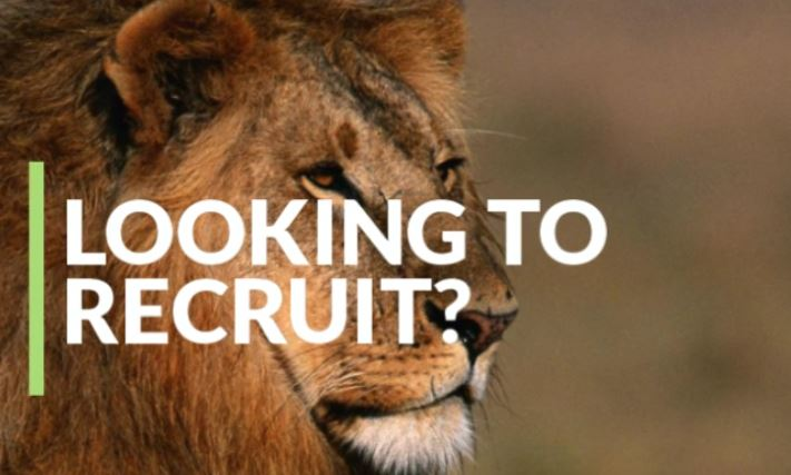 Looking to Recruit?