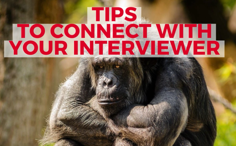 Video on Tips to connect with your interviewer
