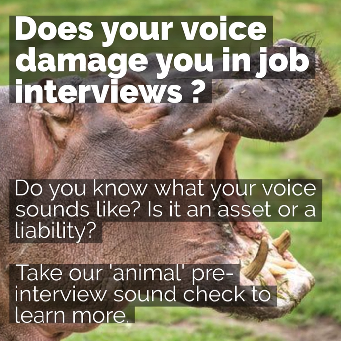 Video on does your voice damage you in a job interview