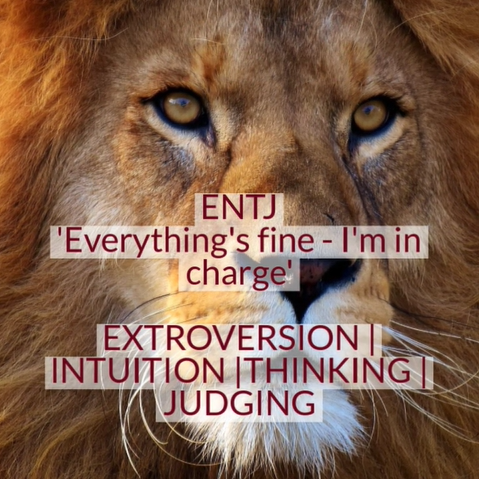 Video on discovering your MBTI personality profile - ENTJ